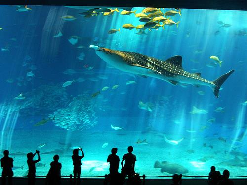 Baños Arabes Londres:Cancún un lugar muy turístico para visitar en México – Maravillas
